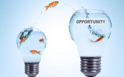 7. Bárki lehet alkalmazottból vállalkozó, befektető